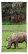 White Rhino 14 Beach Towel