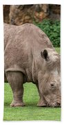 White Rhino 5 Beach Towel