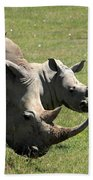 White Rhino Mother And Calf Beach Towel