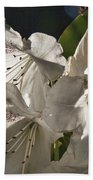 White Rhododendron B Beach Towel