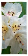 White Rhododendrons Beach Towel