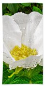 White Rose At Norris Point In Gros Morne National Park-newfoundland  Beach Towel