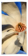 White Saucer Magnolia Beach Towel