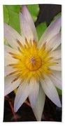 White Star Lotus Beach Towel