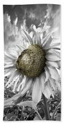 White Sunflower Beach Towel