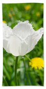 White Tulip On The Green Background Beach Towel