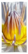 White Waterlily Beach Towel