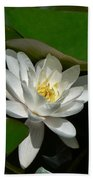 White Waterlily Lotus Beach Towel