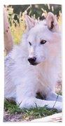 White Wolf Taking It Easy Beach Towel