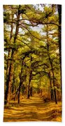 Whitebog Village Woods In New Jersey  Beach Towel