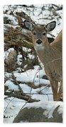 Whitetail Deer Doe In Snow Beach Towel
