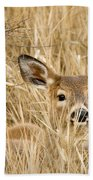 Whitetail In Weeds Beach Towel