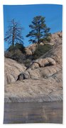 Willow Lake Number One Color Beach Towel by Heather Kirk