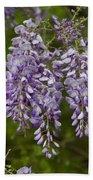 Wild Alabama Wisteria Frutescens Wildflowers Beach Towel