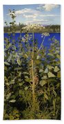 Wild Angelica Beach Towel