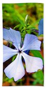 Wild Blue Phlox Near Hastings-michigan   Beach Towel