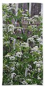 Wild Caraway And Old Fence Beach Towel