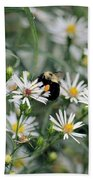Wild Daisies And The Bumblebee Beach Towel