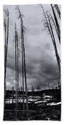Wild Fire Aftermath In Black And White Beach Towel