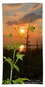Wild Flower Ia Mlo Beach Towel