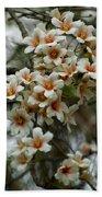 Wild Flowering Beauty Beach Sheet