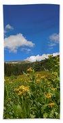 Wild Flowers In Rocky Mountain National Park Beach Towel