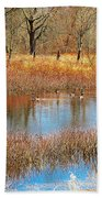 Wild Geese On The Farm Beach Towel