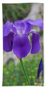 Wild Growing Iris Croatia Beach Towel