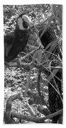 Wild Hawaiian Parrot Black And White Beach Sheet