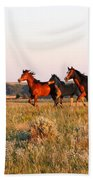 Wild Horses At Sunset Beach Towel