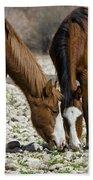 Wild Horses Grazing  Beach Towel