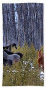 Wild Horses Of The Ghost Forest Beach Towel