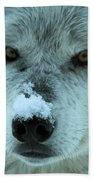 Wild Intensity Beach Towel