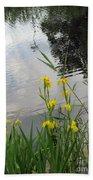 Wild Iris By The Pond Beach Towel by Ausra Huntington nee Paulauskaite