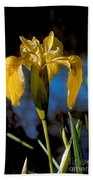 Wild Iris Beach Towel