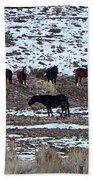 Wild Nevada Mustangs Beach Towel