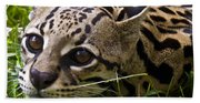 Wild Ocelot Beach Towel