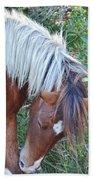 Wild Ponies Of Assateague 21 Beach Towel