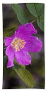 Wild Rose Beach Towel