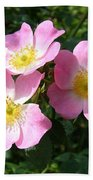 Wild Roses 1 Beach Towel