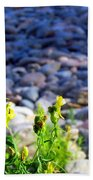 Wild Snapdragons  Beach Towel