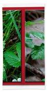 Wild Strawberry Plant - Fragaria Virginiana Beach Towel