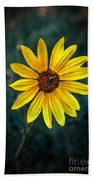 Wild Sunflower Beach Towel