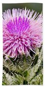 Wild Thistle  Beach Towel