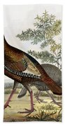 Wild Turkey Beach Towel by Titian Ramsey Peale