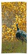 Wild Turkeys And Fall Colors Beach Towel