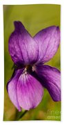 Wild Violet Beach Towel