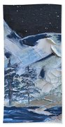 Wilderness Sky Beach Towel