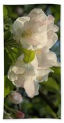 Wildf Apple Blossoms Beach Towel