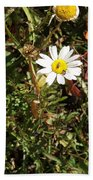 Wildflower @ Kit Carson Beach Towel